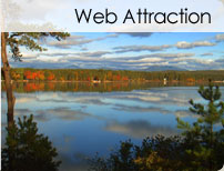 Web Attraction